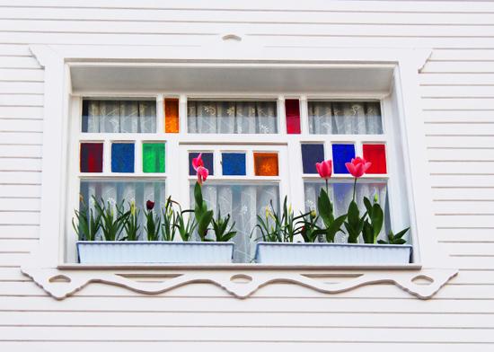 tulipanes-decorar-ventanas