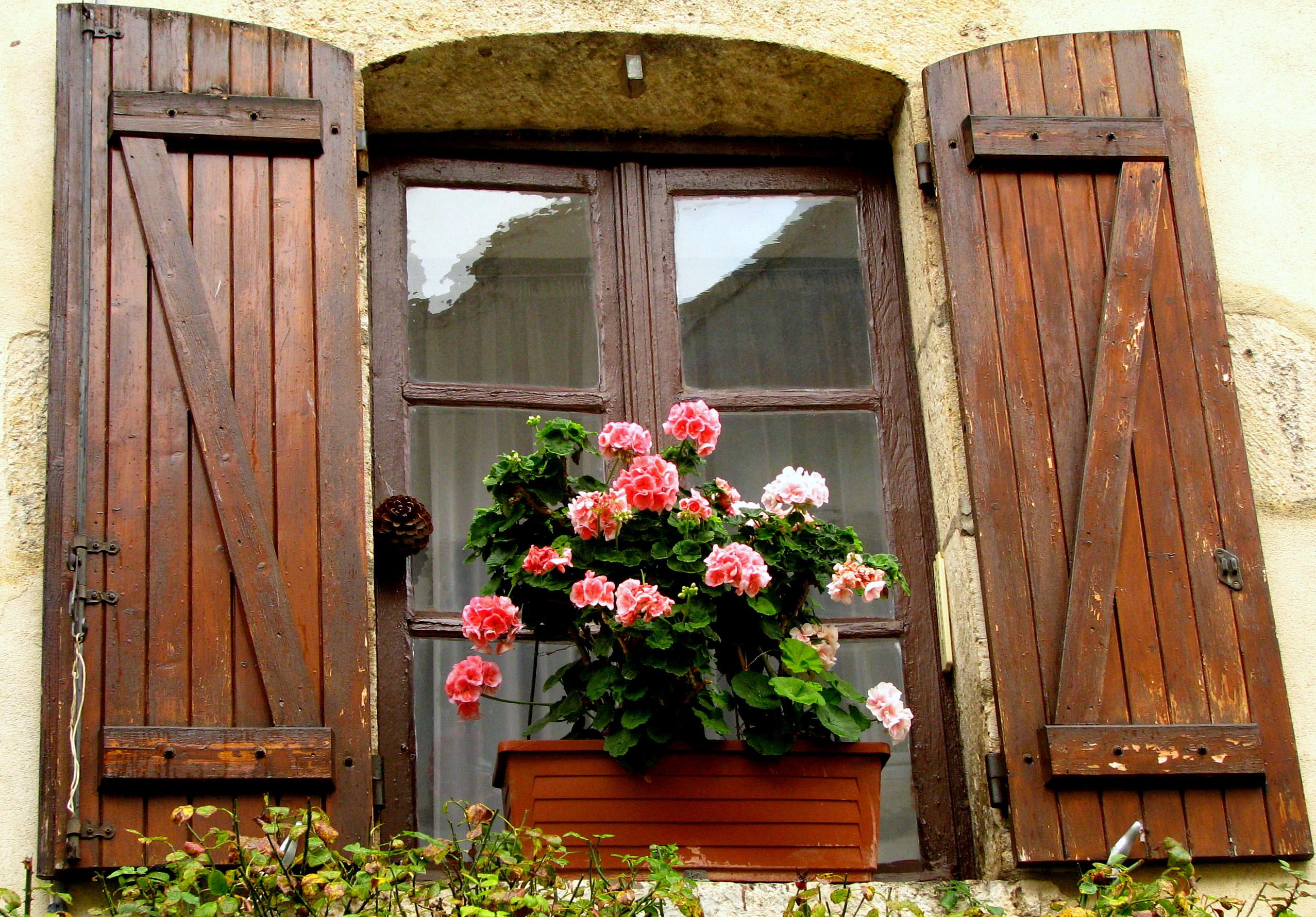 6 ideas geniales para decorar tus ventanas con flores - Condensacion en las ventanas ...
