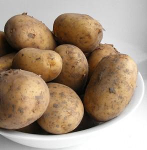 cultivar patatas en macetas