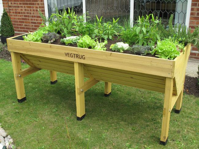 Verduras a cultivar en otoño