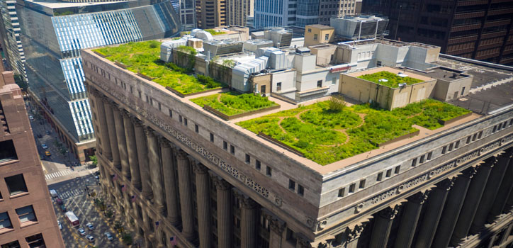 Image1_ChicagoGreenRoof_featured