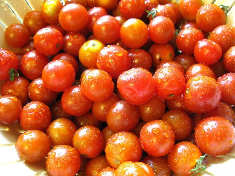 Consejos para cultivar tomates cherry
